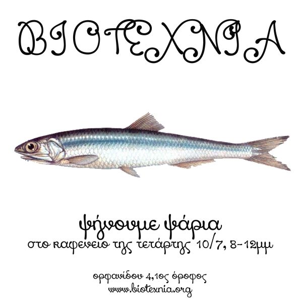 fish final